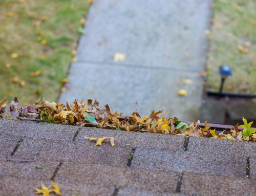 How To Clean Your Roof – Step by Step